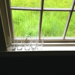 Glasses left on the windowsill had not been removed during our stay