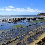 Schooner Gulch State Beach Foto