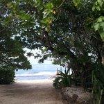 La playa se ve desde el bungalow