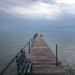 Lake Erie dock adjacent to property