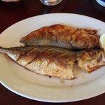 Fresh Akule Fish