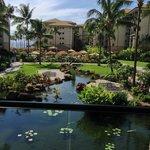 Westin Villas Lobby view