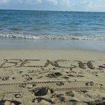 Playa Dorado Beach