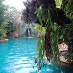 relaxing main pool
