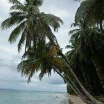 Zapatillas island