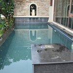 pool in sea front villa