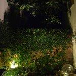 Uno dei 2 giardinetti interni
