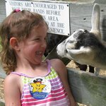 Get up close and personal with our Barnyard Buddies!