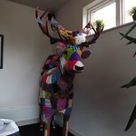 A Hand Knitted Stag