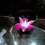 Fleur dans chambre de bain