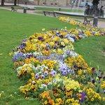 Цветочные клумбы в парке  Замковой площади.