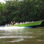 River Wallace - CHUKKA