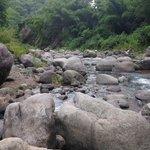 Tom's River