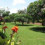 hotel garden!