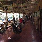 The hammock hallway.