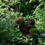 BUtchart Gardens Squirrel