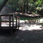 Group talk area