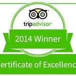 TripAdvisor Certificate of Excellence Winner!