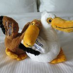 The pelicans the front desk gave my kids at check in