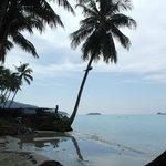 Пляж, море, пальмы...