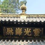golden temple detail