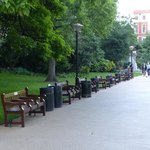 Victoria Embankment Gardens - lot of park benches