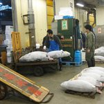 Auction in Action - loading the selected Tuna