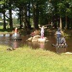Fisherground pond
