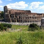colloseum from the palantine hill