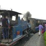 Toy ride with steam train in Darjeeling