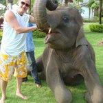 """Le """"petit """"+ lors de notre séjour = un éléphanteau ;-) dans les jardins de l'hôtel !"""