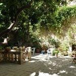 Gorgeous interior garden