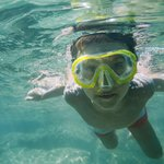 Immerse yourself in the natural environment and join a guided snorkelling tour