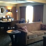 Living area VIP Suite