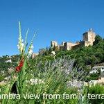 Vista Alhambra desde la terrraza familiar
