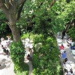 La jardin au soleil pour le brunch du dimanche