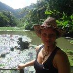 На озере с лотосами