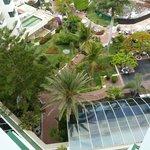 vue du jardin du balcon