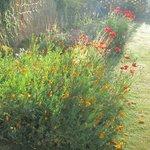 il giardino del pinn hill