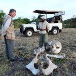 Our Safari Guide, Abe