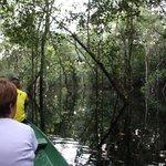 alla ricerca dei caimani