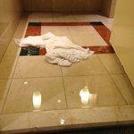 FLOOD BATHROOM