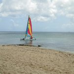 Free for the asking sailboat..the guys @the dive shack will take you out if you are a novice.