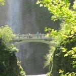 Multnomah bridge with falls in the background