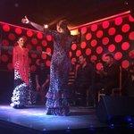 flamenco performers