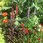 Gardens in May