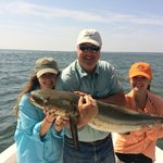 Cobia trophy!