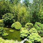 Japanese Teahouse garden