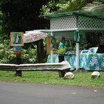 Laura Mango Art roadside gallery on the Road to Hana
