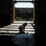 Burgkatze sucht Schatten